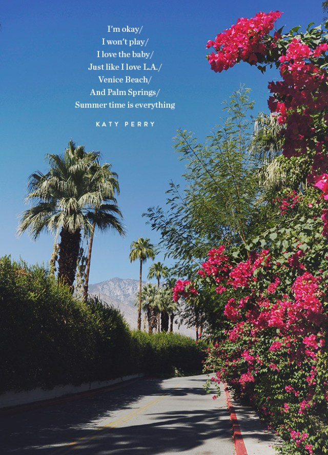 Nubby Twiglet | A Less-Traveled View Of Palm Springs Plus 10 Tips To Make The Most Of Your Stay