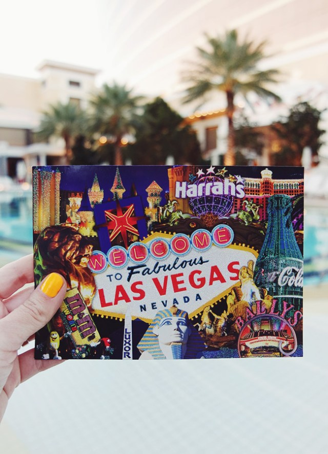 Nubby Twiglet   Viva Las Vegas: 12 Questionable Gift Shop Purchases