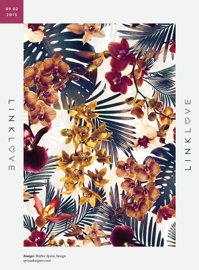 Nubby Twiglet | Link Love: Walter Spina Design