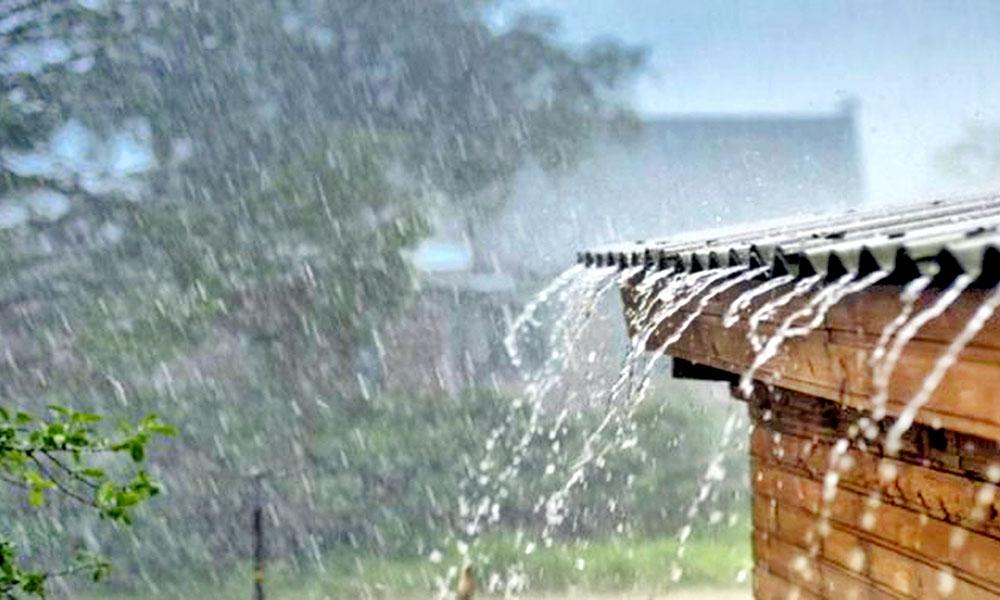 Ministerio de Agricultura informa tormenta tropical Fred no causó daños al sector agrícola