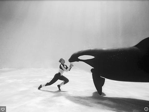 Dawn Brancheau underwater with whale