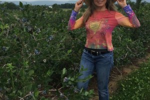 Picking Blueberries at Glade-Link Farms