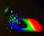 Color Fragments by Ed Palaszynski Copyright © 2013