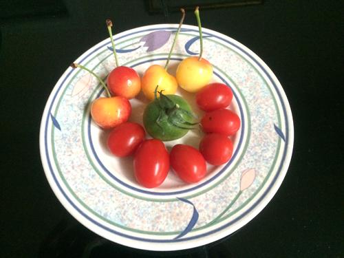 http://i2.wp.com/nwasianweekly.com/wp-content/uploads/2014/33_32/blog_cherries.JPG?resize=500%2C375