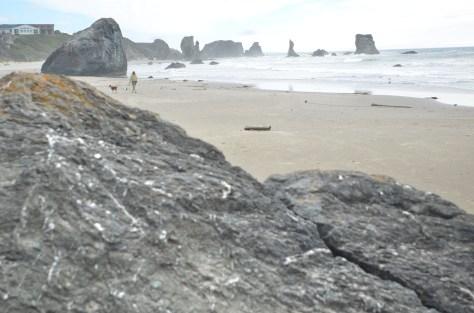 or coast 2013 344