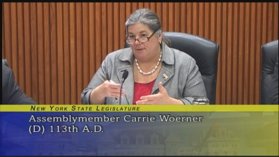 New York State Assembly | Carrie Woerner