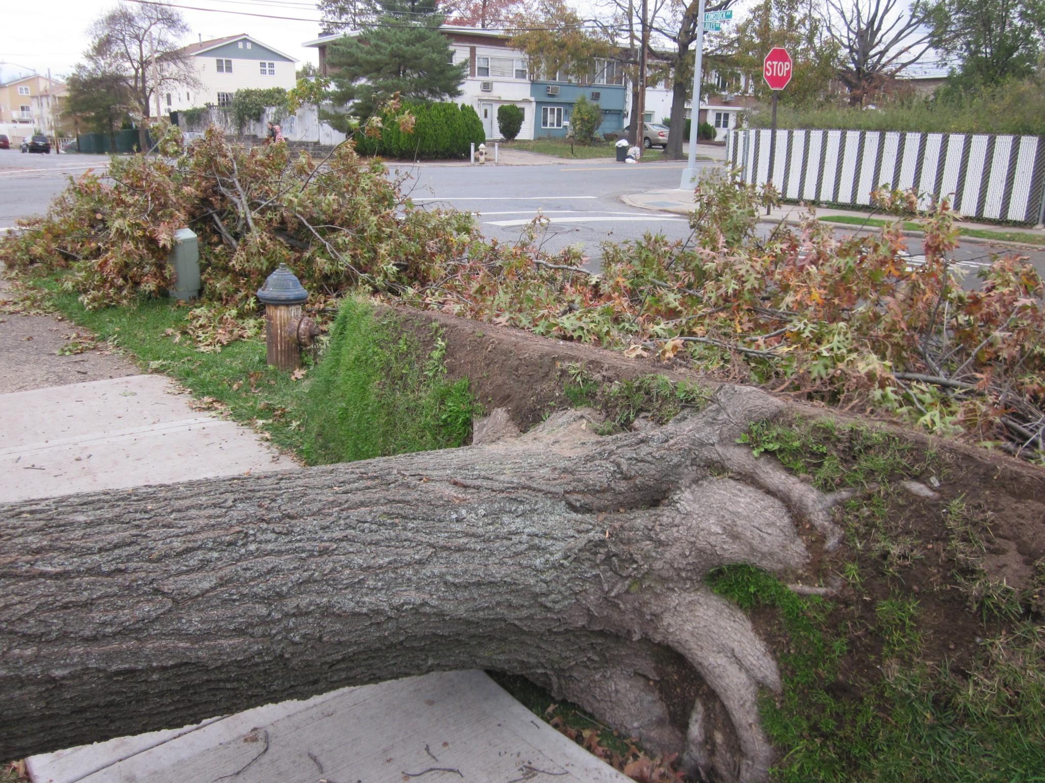 Hurricane sandy flood damage