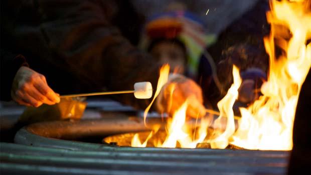WinterFireMarshmallow