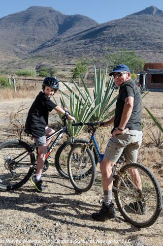 Jan_Damion Bicycle