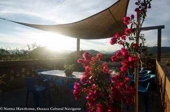 Casita Roof Sunset-3