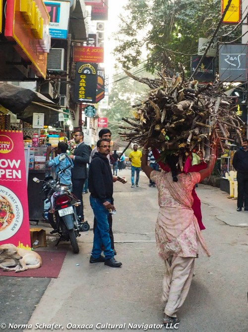 Carrying firewood through Hauz Khas Village