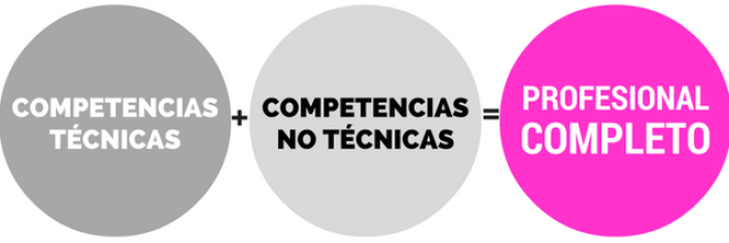 profesional-completo