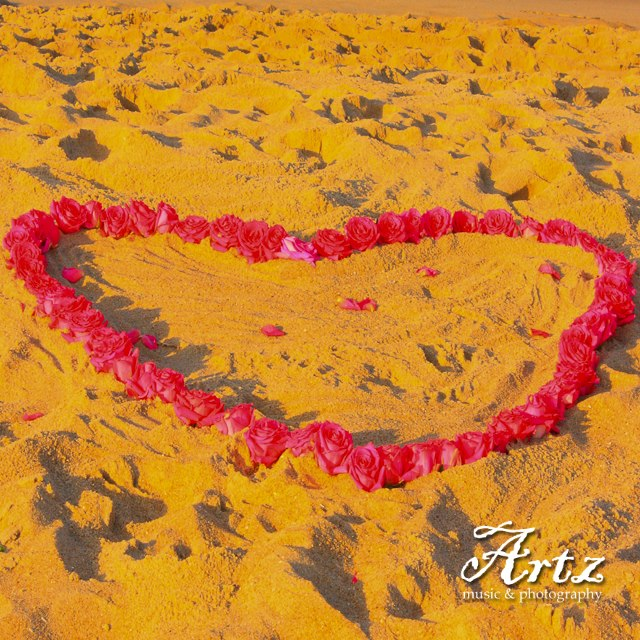 Celebrate Valentine's Day 2016 on the Outer Banks