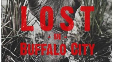 Lost in Buffalo City - poster 02