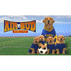 Small Crop Of Air Bud Dog