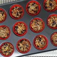 Mixed Berry Coconut Granola 'Muffins'