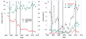 Benthic community from 1987 to 2013 at Yawzi Point. The gray bars highlight years in which hurricanes impacted. Source: Tsounis and Edmunds 2017.