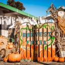 Journey School's 10th Annual Harvest Faire