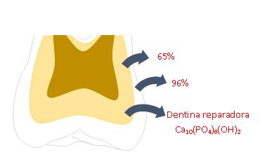 Capacidade de remineralização; Serve como suporte; pH critico < 6,5.