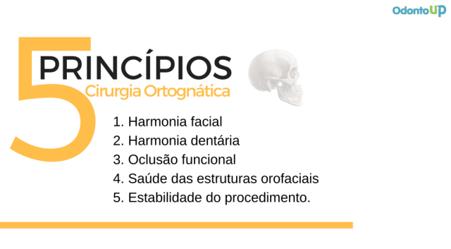 ortognatica