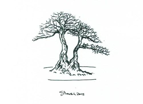 twin-trunk
