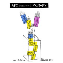 APC Transparent Primary?
