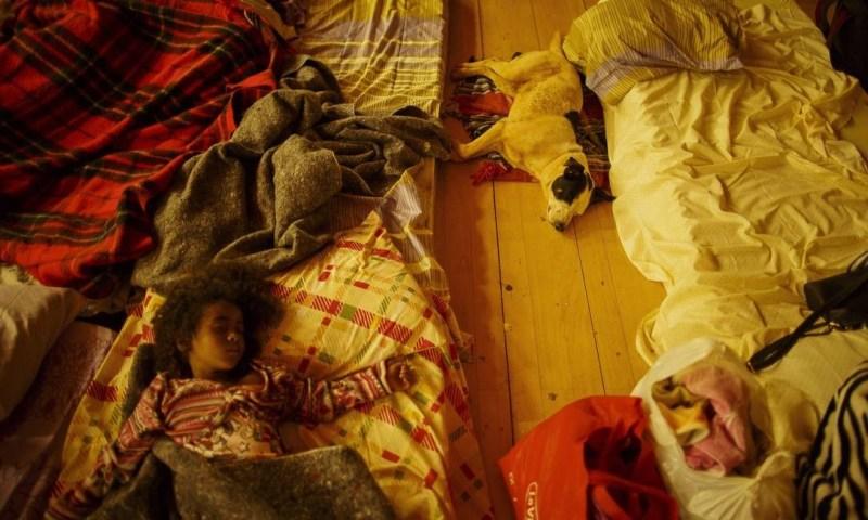 Diversas famílias foram levadas para o abrigo, alguns animais de estimação acompanharam seus donos Daniel Marenco / Agência O Globo