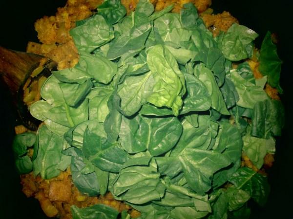 201359 spinach injera9