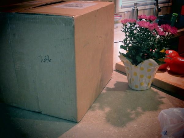2013823 wayfare box