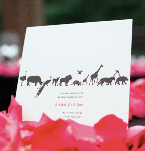 Mr Boddington Black White Zoo Animals Wedding Invitation 500x521 A Wedding at the Zoo