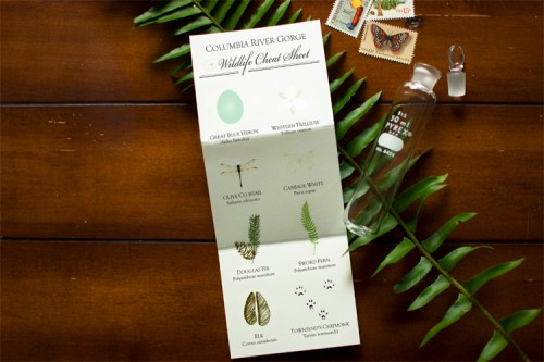 woodland wedding invitations2 500x333 Alyson + Levis Vintage Botanical Wedding Invitations