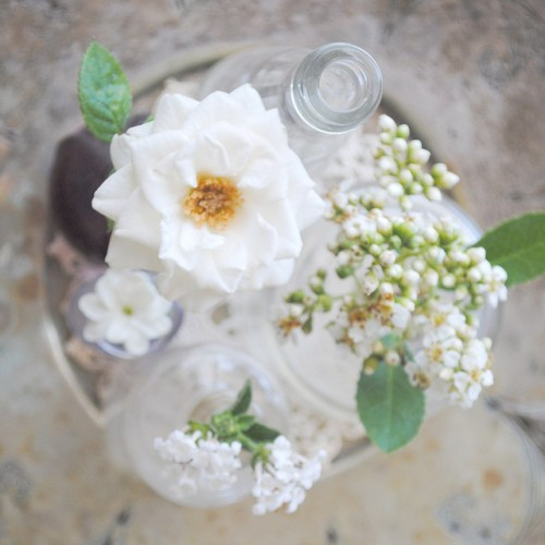 white flowers 500x500 {happy weekend!}