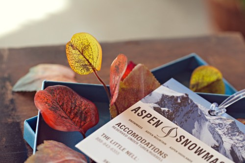 Fall Aspen Wedding Save the Dates6 500x333 Fall Ski Inspired Aspen Save the Dates