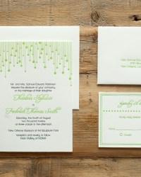 Celebration Blackbird Wedding Collection