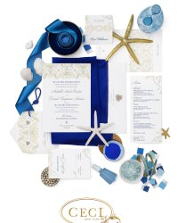 Wedding Invitation Designers - Ceci New York (26)