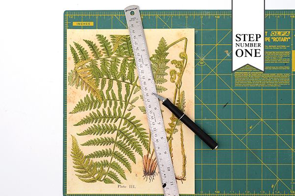 Patterned Backer Step1 DIY Tutorial: How to Back Invitations with Patterned Paper