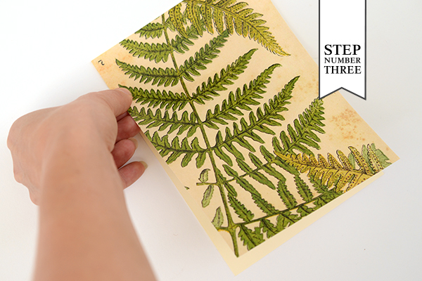 Patterned Backer Step3 DIY Tutorial: How to Back Invitations with Patterned Paper