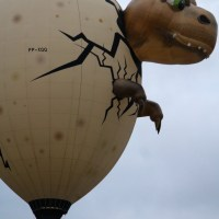 Yes, cows fly:  Special Shape Rodeo at Albuquerque International Balloon Fiesta
