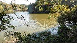 雄蛇ヶ池10/16デカ羽根モノで3本、減水80~90cm