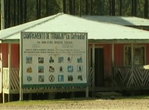 Empresa forestal