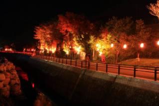 Yamanashi's Red Leaves
