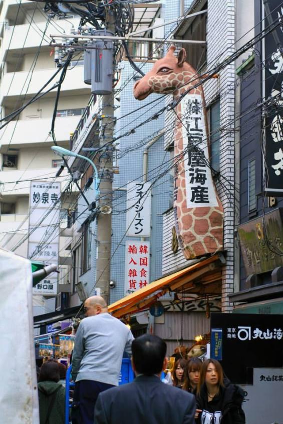 Kirin Buidling, Tsukiji, Tokyo