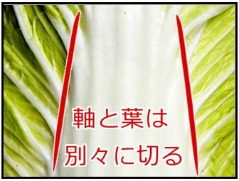 白菜の軸と葉の画像