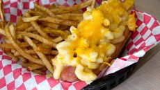 The mac-and-cheese dog made with Nathan's meat at Stray Dog Cafe. (Shannon Cornman)