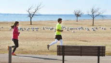 A couple of runners, one on the trail, one on the grass along the Bert Cooper Trails at Lake Hefner, 1-5-16.  (Mark Hancock)