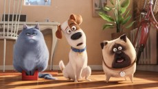 "(L to R) Fat cat Chloe (LAKE BELL), pampered terrier mix Max (LOUIS C.K.), and excitable pug Mel (BOBBY MOYNIHAN) in Illumination Entertainment and Universal Picturesí ""The Secret Life of Pets,"" a comedy about the lives our pets lead after we leave for work or school each day."