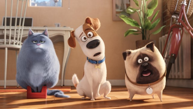 """(L to R) Fat cat Chloe (LAKE BELL), pampered terrier mix Max (LOUIS C.K.), and excitable pug Mel (BOBBY MOYNIHAN) in Illumination Entertainment and Universal Picturesí """"The Secret Life of Pets,"""" a comedy about the lives our pets lead after we leave for work or school each day."""
