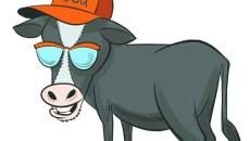 cfn_cow