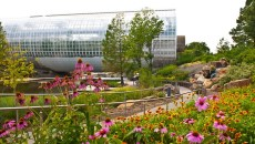 Participants of the National Urban Ecosystems Forum will tour Myriad Botanical Gardens as an example of an urban development project that helps maintain a beautiful city for all species. | Photo Gazette file