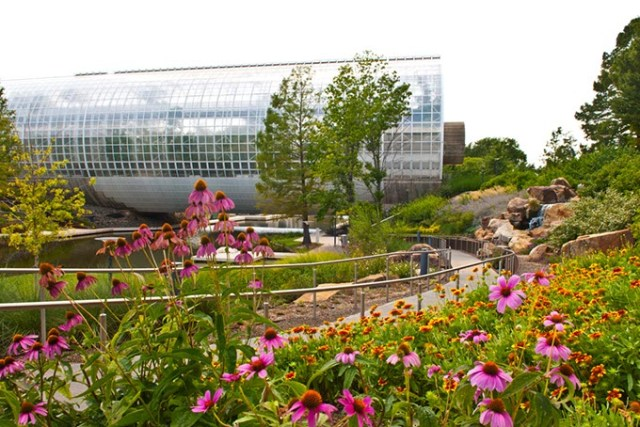 Participants of the National Urban Ecosystems Forum will tour Myriad Botanical Gardens as an example of an urban development project that helps maintain a beautiful city for all species. (Gazette / file)